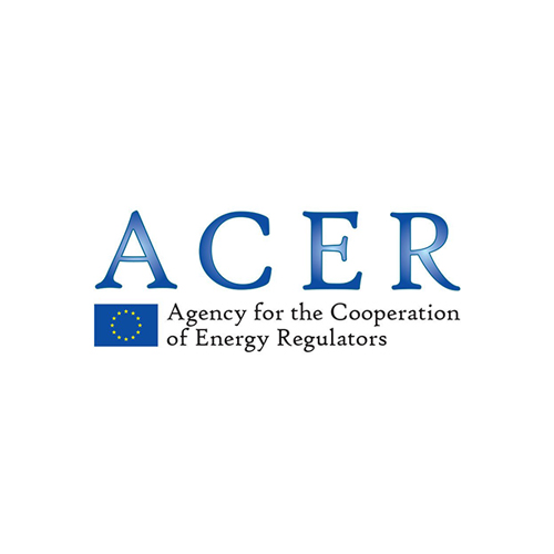 ACER Agency for the Cooperation of Energy Regulators